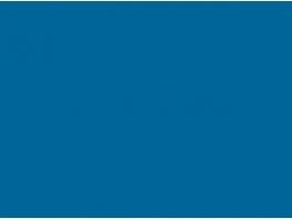 "P017 Bleu ""Gordini"" (CFD CC80001) 30ml"