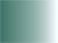 P208 Patine vert mousse 30ml