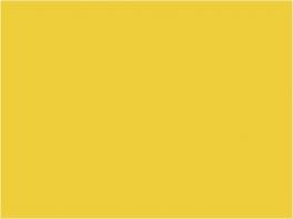 P041 jaune bar (SNCF 441)