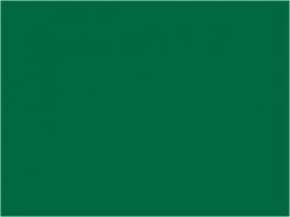 P050 vert moyen (SNCF 303)