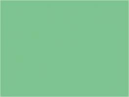 P055 vert jade RATP