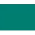 P076 vert clair SNCB 30ml