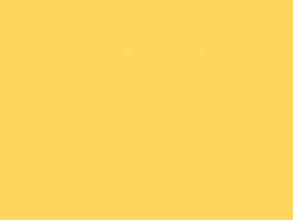 P779 jaune Dijon (SNCF 476)