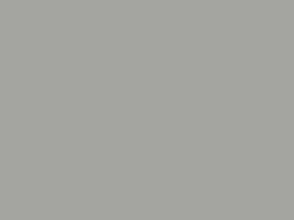 P092 Gris métalisé toitures FS RAL9007