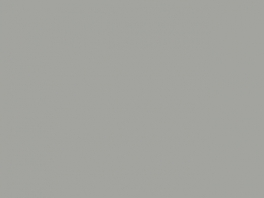 P792 Gris métalisé toitures FS RAL9007