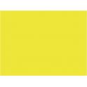 P938 jaune jonquille (SNCF 401) 20ml hydro