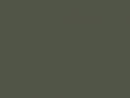 P9004 vert exterieur v2 (SNCF 306) 20ml