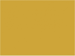 P988 jaune TSO Infra 20ml
