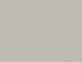 P9018 gris argent (SNCF 806) 20ml hydro