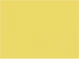 P994 jaune paille RGP (SNCF 410)