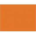 P152 Chamois (orange) (SNCF 432)  30ml