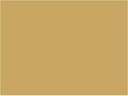P189 Jaune beige EWS 30ml