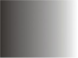 P201 Patine noir sale 30ml